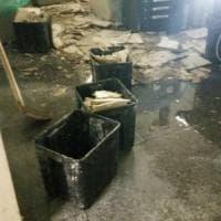 Torino: per un tubo dell'acqua rotto crolla controsoffitto alle Molinette