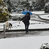 Piemonte sotto zero, vento sulla pianura, ma stop alle precipitazioni