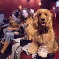 Torino, al cinema Massimo quattrozampe in sala per l'anteprima di