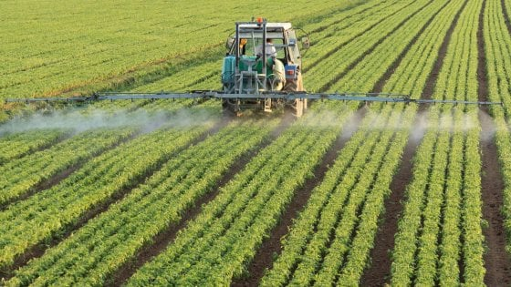 Controlli del Nas in Piemonte tra i commercianti di fertilizzanti: mezzo milione di multe