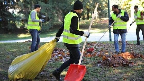 Giardinieri sì, purché italiani: bando pubblico discriminato