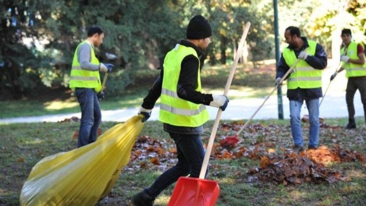 Il bando dell'Agenzia servizi Territoriali che cerca giardinieri, purché italiani,
