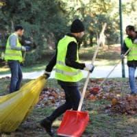 Giardinieri sì, purché italiani: bando pubblico discriminatorio bloccato dal tribunale di...