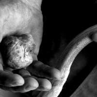 Alba e Montà vogliono un Museo del tartufo: i Comuni lanciano il bando