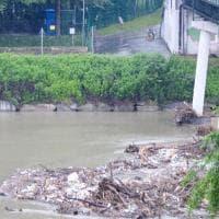 Torino, sospesa la navigazione sul Po per una settimana per rimuovere tronchi