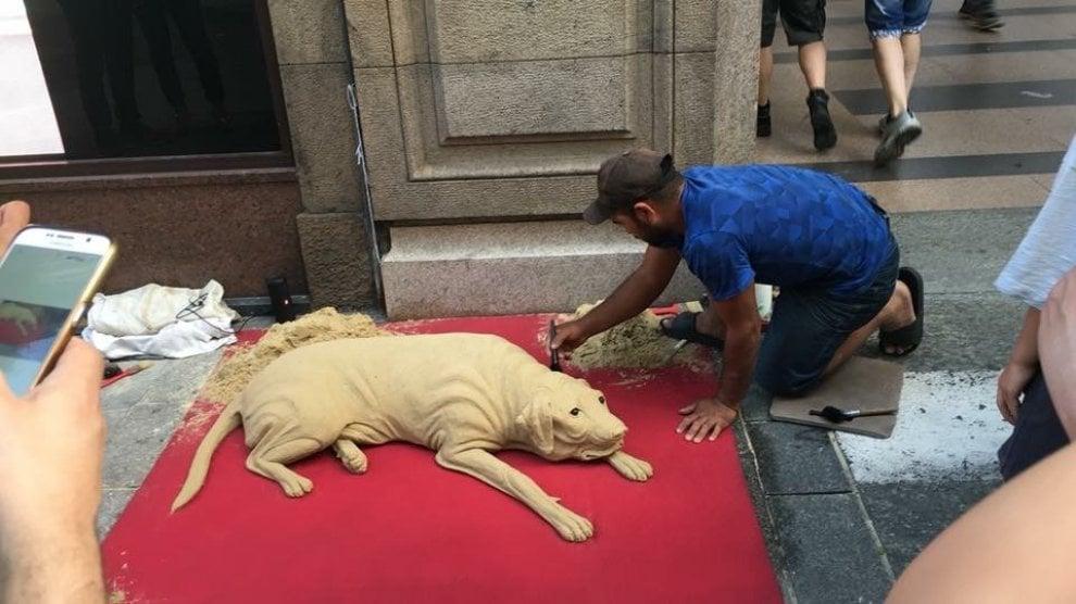 Torino, cani di sabbia nelle vie del centro: l'idea di un artista di strada romeno