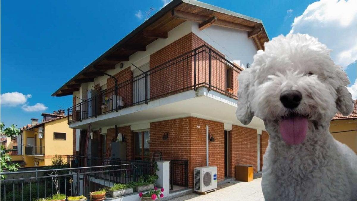 Torino le case consigliate da nelson agente immobiliare for Quattro ristoranti torino