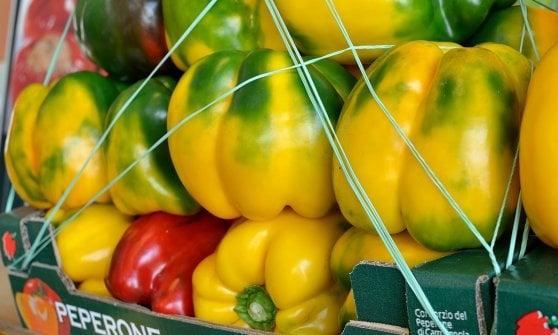 Peperoni e zucca: così si mantiene il colore dell'estate. E non solo...