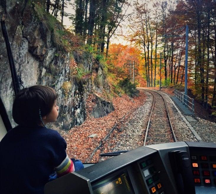 """Scorci incantati d'autunno tra Italia e Svizzera, in viaggio col """"Treno del Foliage"""""""