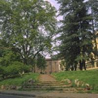 Torino, asilo inagibile: chiuso all'improvviso il nido dei giardini Cavour