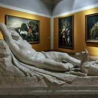 "Cani in posa a Venaria, dal ""cave canem"" di Pompei a Canova e Keith Haring"