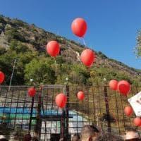 Manifestazione No Tav, e i fogli di via volano in cielo legati a palloncini