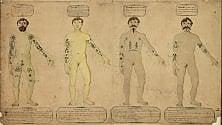 Quando la pelle si veste d'arte: secoli di tatuaggi in mostra al Mao