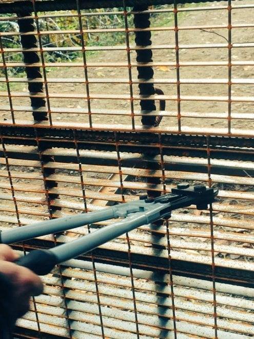 """""""Passeggiata"""" No Tav in Val Susa con taglio delle recinzioni del cantiere"""