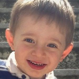 Biella, i ladri le rubano l'hard disk con le foto del figlio morto: appello social per recuperarlo