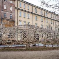 Torino: spunta una cupola di bambù nei giardini abbandonati della Cavallerizza Reale, patrimonio Unesco