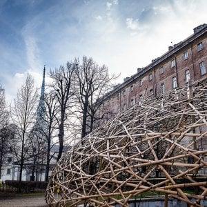 Torino, spunta una grande cupola di bambù nei giardini della Cavallerizza Reale