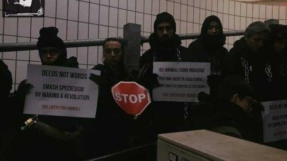 """Torino, cento attivisti animalisti bloccano il """"corridoio della morte"""" del mattatoio"""
