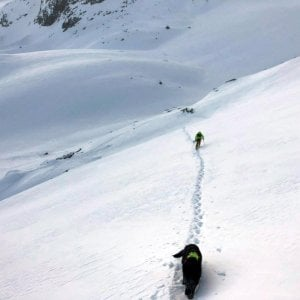 Valanga in Val d'Aosta, muore scialpinista altri due salvati dai soccorritori