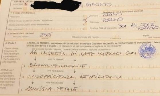 """Neonato muore di polmonite a Torino, l'ospedale l'aveva dimesso: """"E' rinite, faccia aerosol"""". Aperta un'inchiesta"""