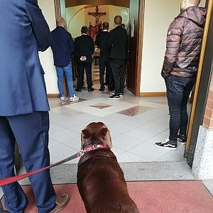Al funerale del suo padrone, il cane deve aspettare fuori dalla chiesa