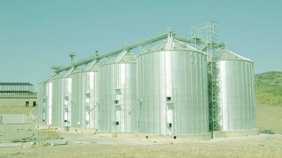Vercelli, un topo morto nel silos del riso: i Nas sequestrano 220 tonnellate
