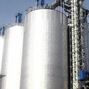 Topi morti e piume nel silos, sequestrate 668 tonnellate di riso tra Novara e Vercelli
