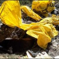 Vercelli, cane  vecchio e malato infilato in un sacco e scaricato nella spazzatura