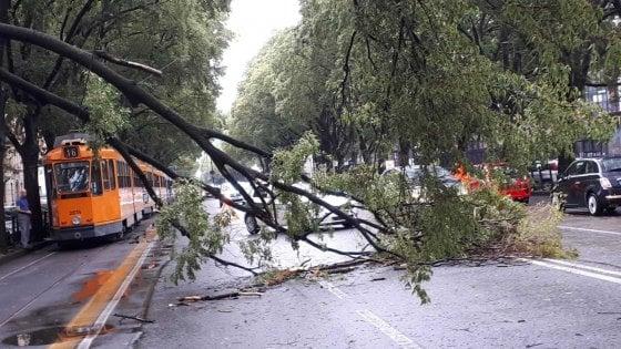 Acquazzone e grandine su Torino, alberi caduti e sottopassi chiusi