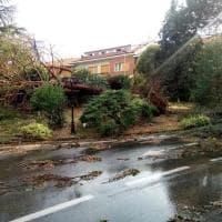 Scene da un nubifragio: da Chieri a Torino, record di pioggia