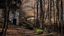 Colori dell'autunno e costruzioni in pietra,  nel Biellese la miglior foto sulle foreste