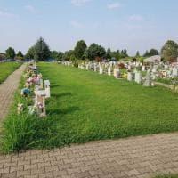 Cimitero Parco di Torino, tagliata l'erba alta tra le lapidi