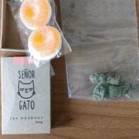 Torino, caramelle gommose alla marijuana sequestrate ad una ragazza di ritorno