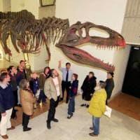 Torino e il Museo delle scienze dimenticato: dopo sei anni è tutto fermo