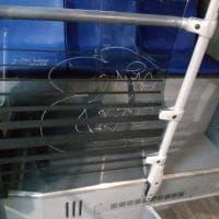 I nuovi bus di Torino appena entrati in servizio e già vandalizzati