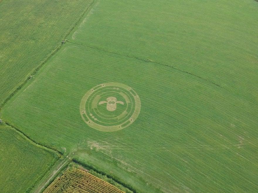 Il mistero dell'impronta gigante di una pecora nei campi di Virle, nel  Torinese