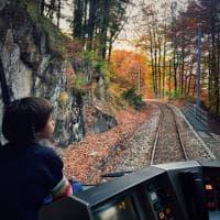 """Il """"treno del foliage"""", in carrozza alla scoperta dei colori dell'autunno"""