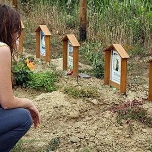 Torino, nasce il cimitero da 2mila posti per cani, gatti e anche cavalli