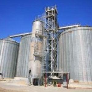 L'impianto per essiccare il mais è troppo rumoroso, risarcimento record ai vicini: 900 mila euro