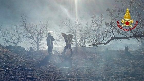 Valsusa, bruciano i boschi sopra Mattie: roghi alimentati dal vento forte