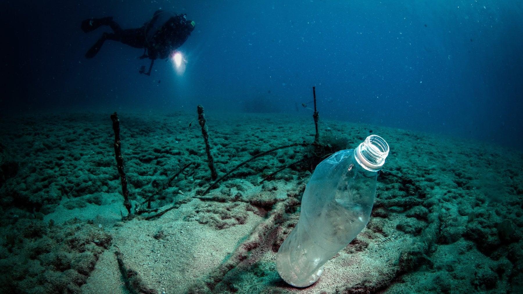 Microplásticos en el fondo marino-posdata digital press