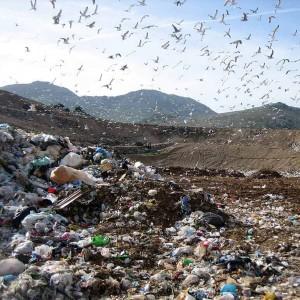Ecco il piano del governo sui rifiuti:  diminuiscano ancora, anche gli sprechi