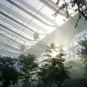 Padova, l'orto botanico dei record: sostenibilità, ricerca e aggregazione urbana