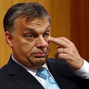 Ungheria, leader neonazista  scopre d'essere ebreo e 'si pente'