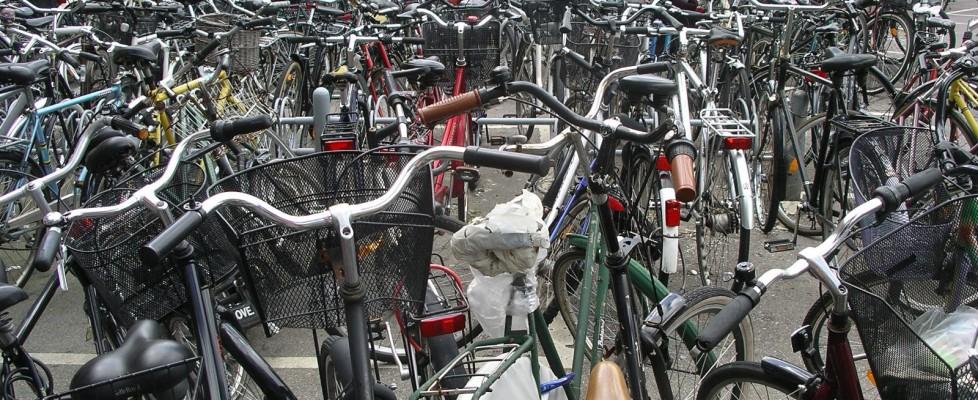 """L'Italia dei """"ladri di biciclette"""": ne spariscono 3mila al giorno, ecco come difendersi"""