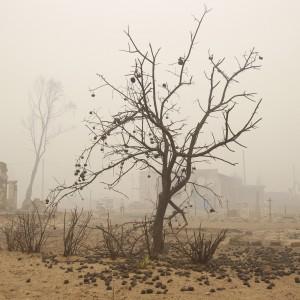 """Pascal Acot: """"Sul clima basta promesse, adesso i governi devono agire"""""""