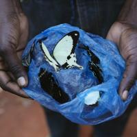 Africa, il villaggio dei cacciatore di farfalle