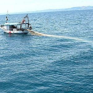 Pesca a strascico profonda, per un pugno di voti il Parlamento europeo non trova l'accordo