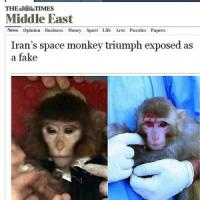Iran, un'altra scimmia nello spazio: è tornata sana e salva