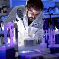 La scienza del 2014? Dalle sonde su Marte agli anticorpi che combattono l'Hiv